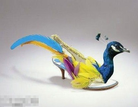 鳥兒鞋.jpg