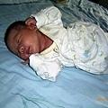 小泊臻~出生15天~已經有點會半翻身了喔~(在台中家)