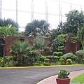 聖地牙哥古堡內的花園