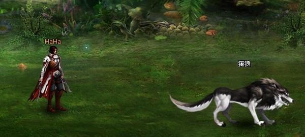 好玩的免費網頁遊戲《龍之召喚2》3 戰鬥1