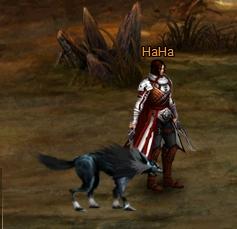 好玩的免費網頁遊戲《龍之召喚2》7寵物2