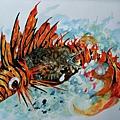 2010的魚