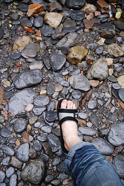 松羅國家步道 (142)