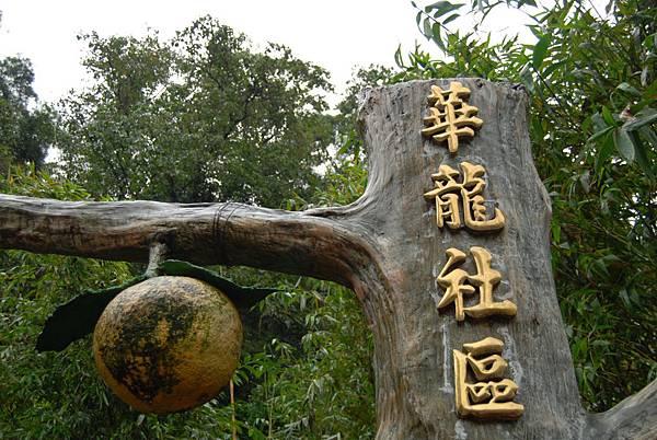 新竹華龍社區 (117)