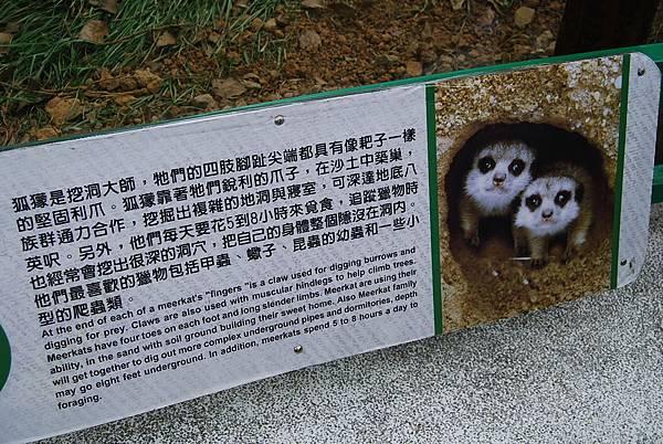 六福村 (479)