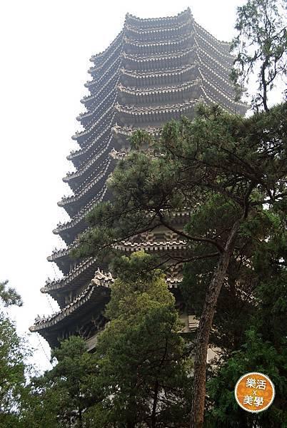 1北京大學 (481)