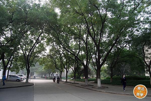 1北京大學 (457)