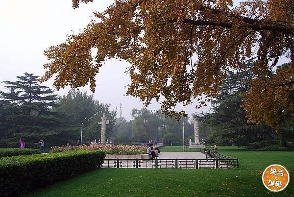 1北京大學 (521)