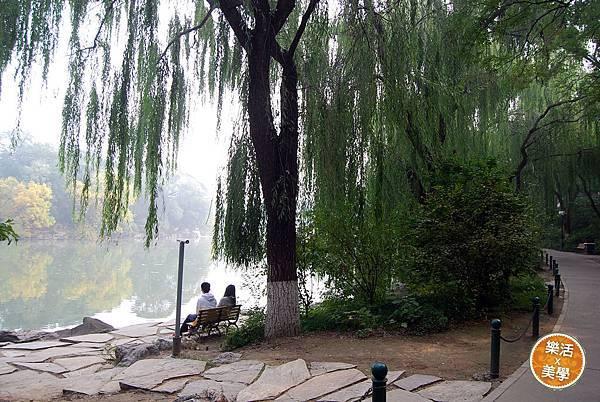 北京大學 (8)