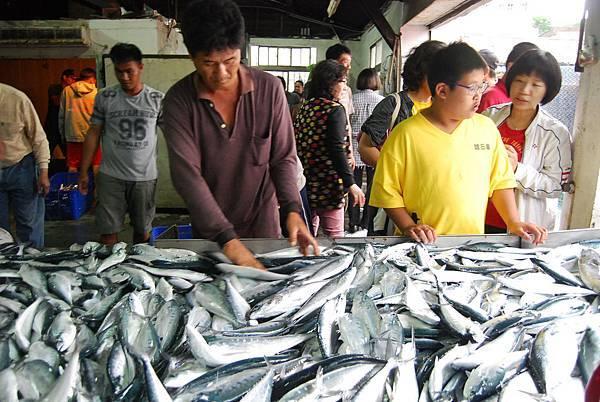 fishbar (14)