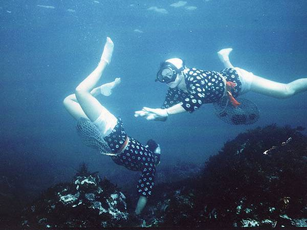 D4-海女潛水