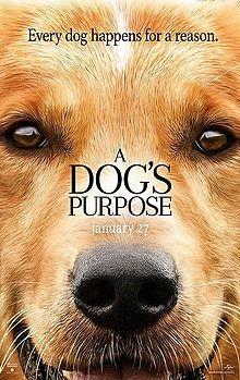 A_Dog%5Cs_Purpose_(film).jpg
