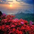 太陽美景.jpg