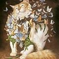 Heidi Taillefer-貓.jpg