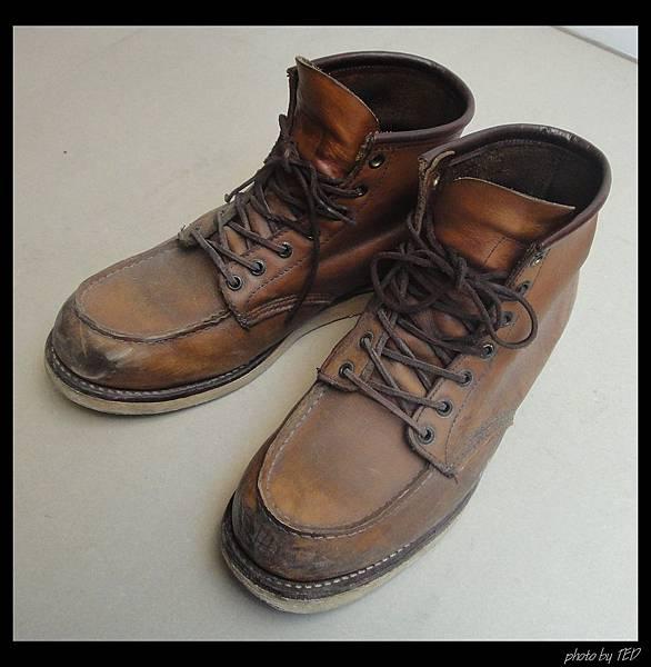 璿鞋.jpg