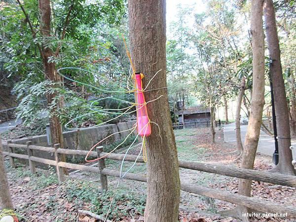 虎形山公園14.JPG