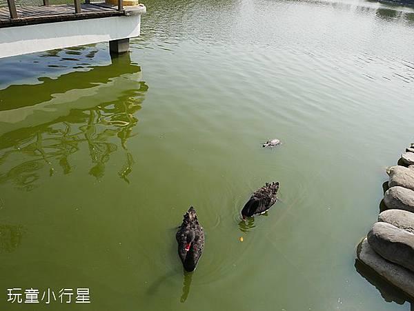 武承恩公園11.JPG
