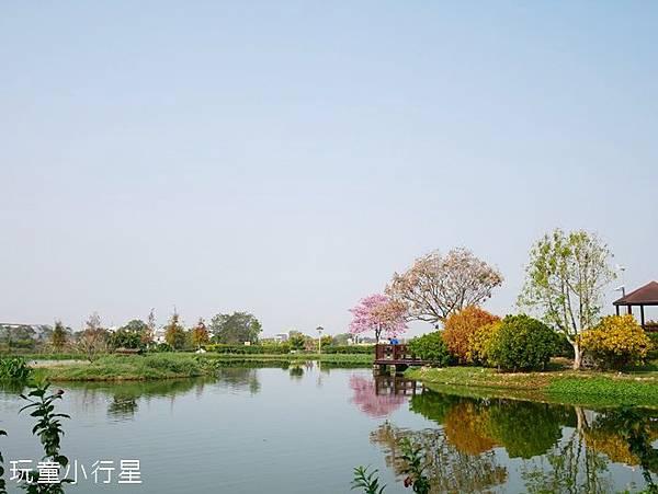明華濕地1.JPG