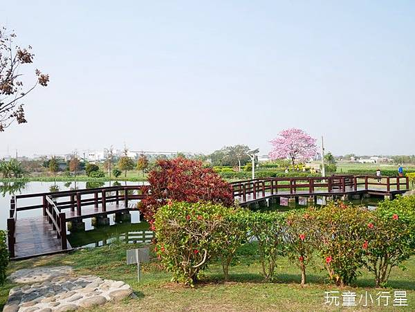 明華濕地4.JPG