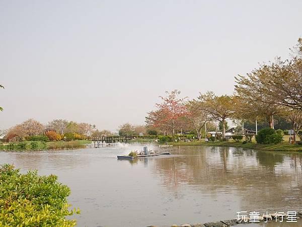 明華濕地16.JPG