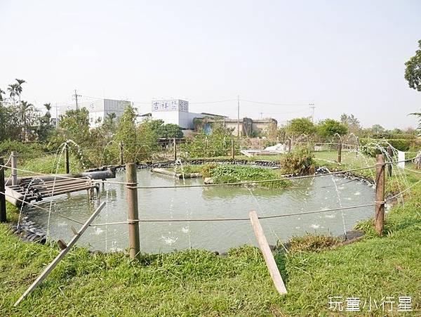 明華濕地17.JPG