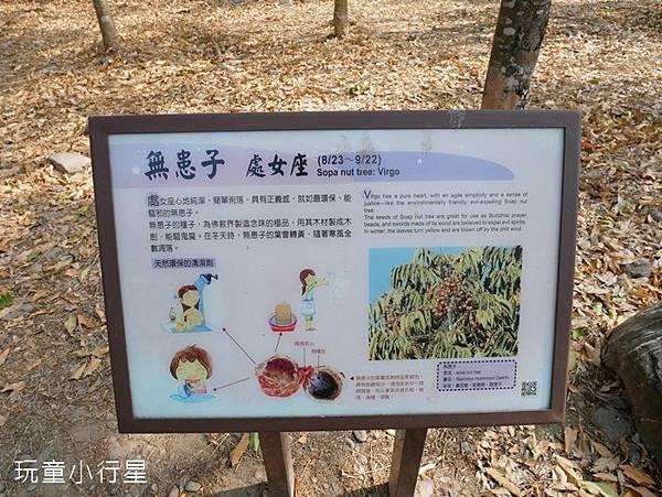平後四林3.JPG