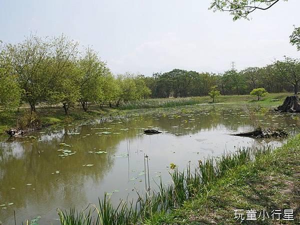 平後四林36.JPG