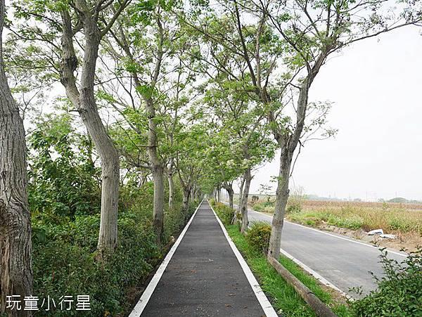 朴子溪自行車道18.JPG
