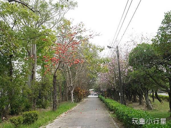 朴子溪自行車道24.JPG