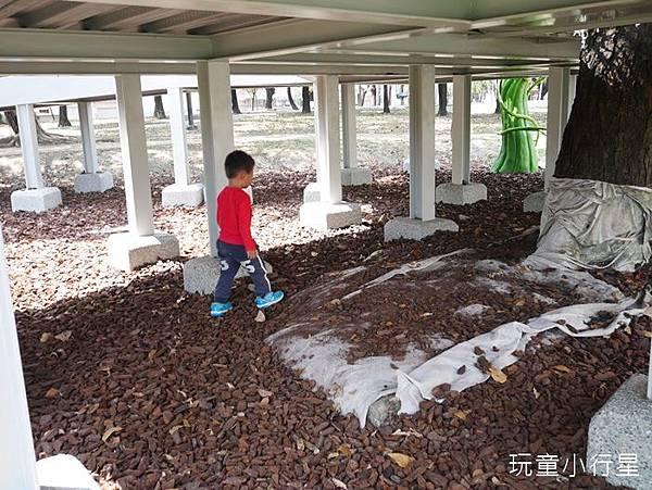 和平公園39.JPG