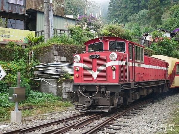 軌道迷必訪,阿里山林業鐵道,奮起湖車站/嘉義免費親子景點