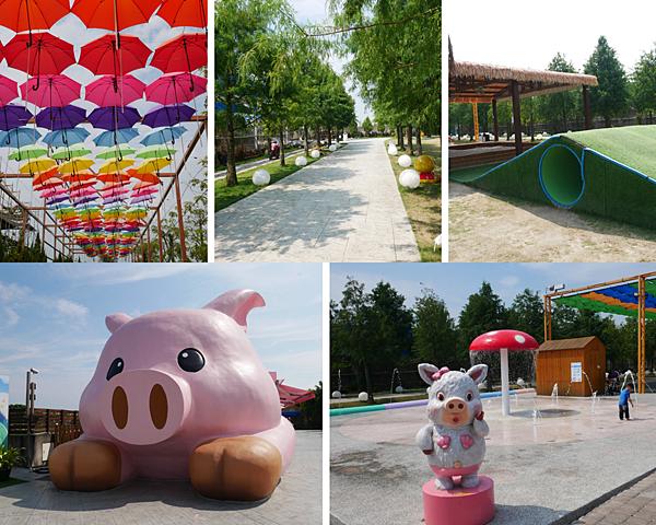 2020嘉義最夯親子同遊景點,玩水玩沙+大草皮+小動物+餵魚+diy/民雄三隻小豬觀光農場