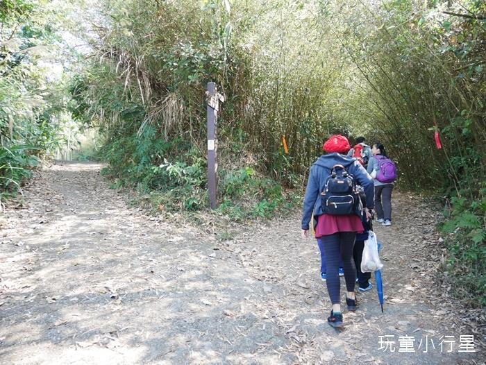 大凍山步道雞籠山12.JPG