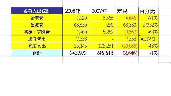 2008花費檢討.JPG