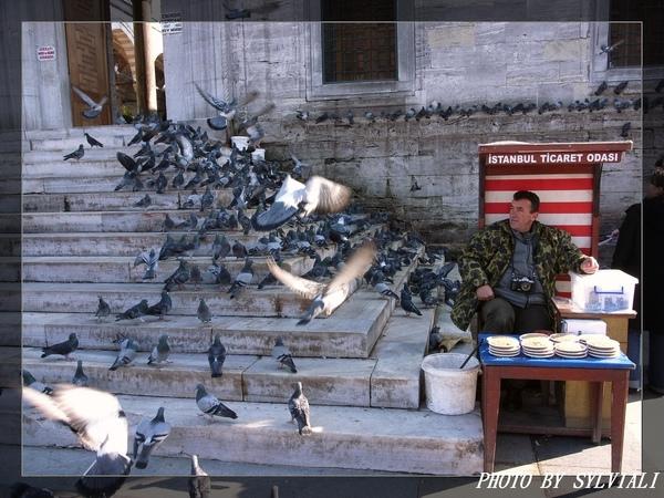 伊斯坦堡-耶尼清真寺01.jpg