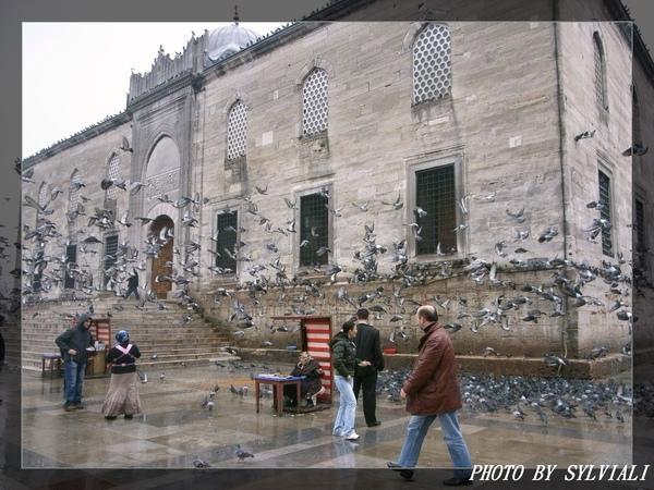 伊斯坦堡-耶尼清真寺10.jpg
