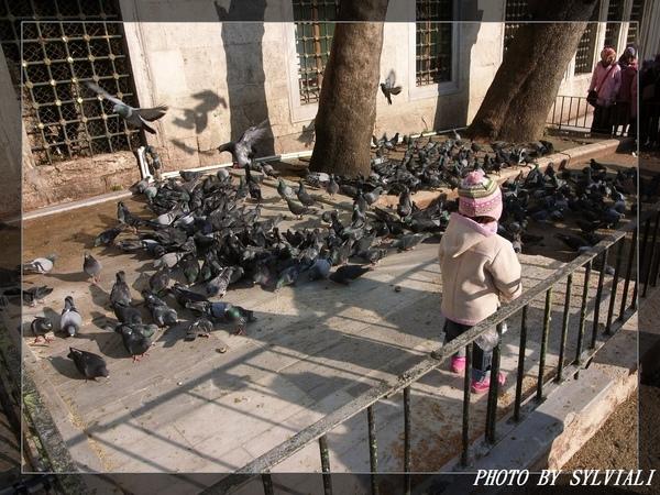 伊斯坦堡-耶普清真寺07.jpg