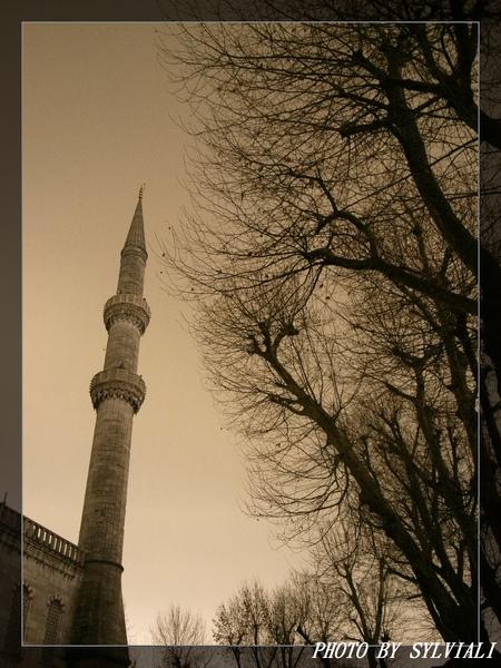 伊斯坦堡-藍色清真寺18.jpg