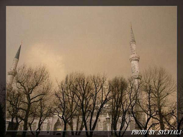 伊斯坦堡-藍色清真寺19.jpg