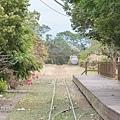 M45A2878-2.jpg