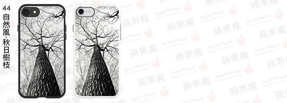 44自然風-秋日樹枝.jpg