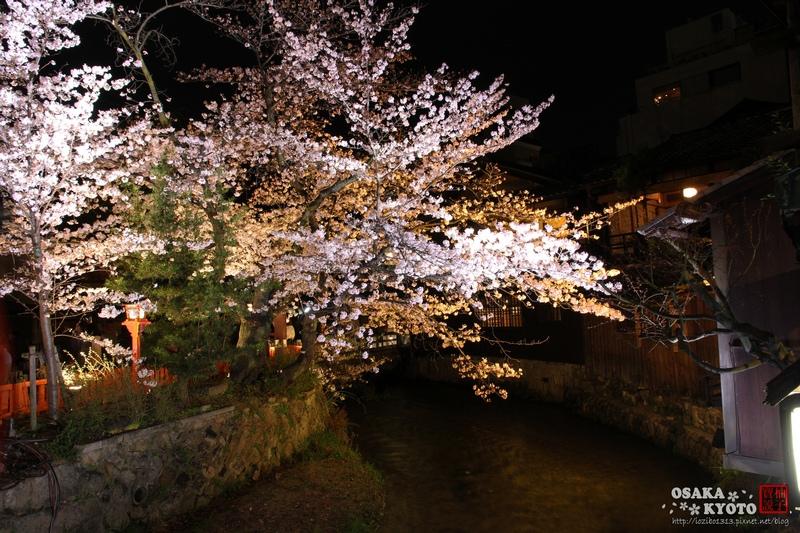 祇園白川_8066.jpg