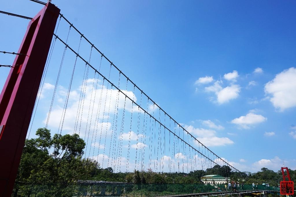 竹崎親水公園天空步道3378.jpg