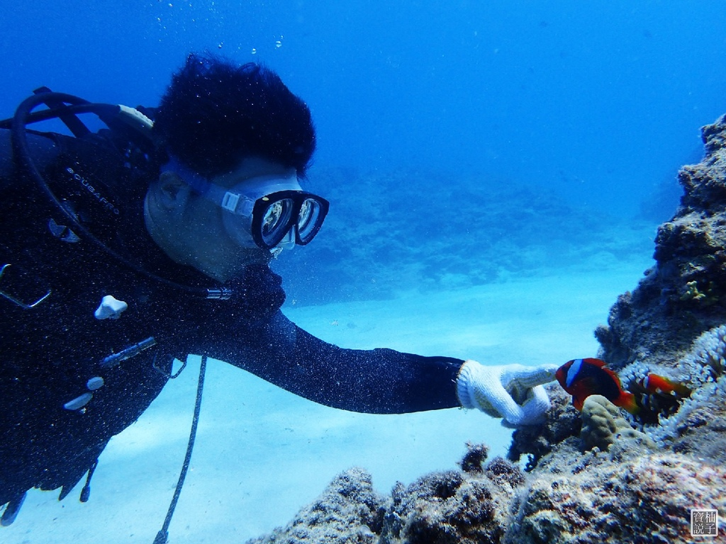 My Diving 浮潛潛水716.JPG