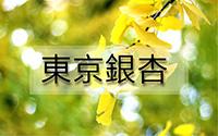 東京銀杏-1.jpg