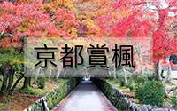京都賞楓-1.jpg