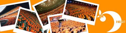 Orange Project
