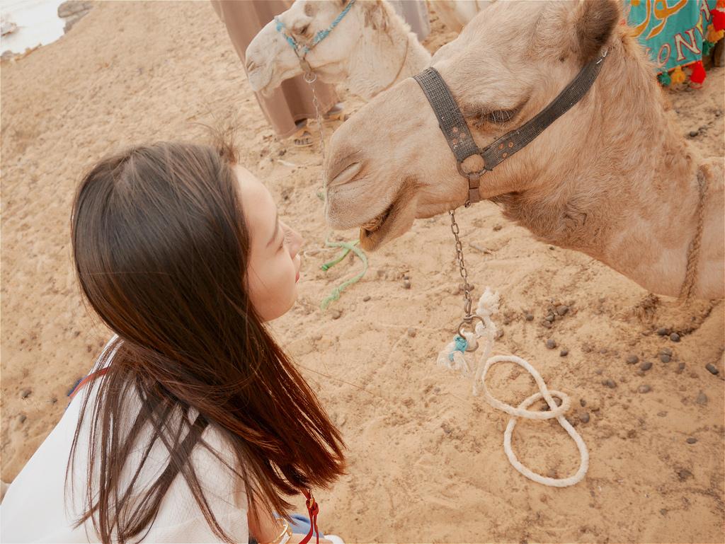 撒哈拉沙漠 01.jpg