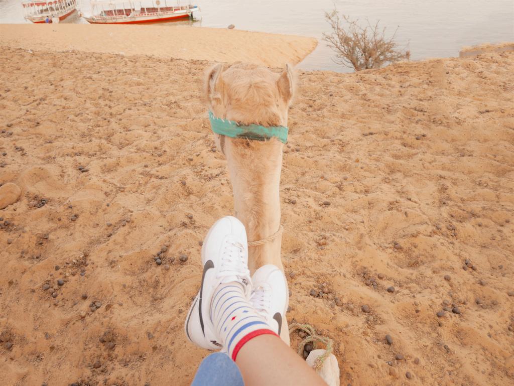 撒哈拉沙漠 02.jpg