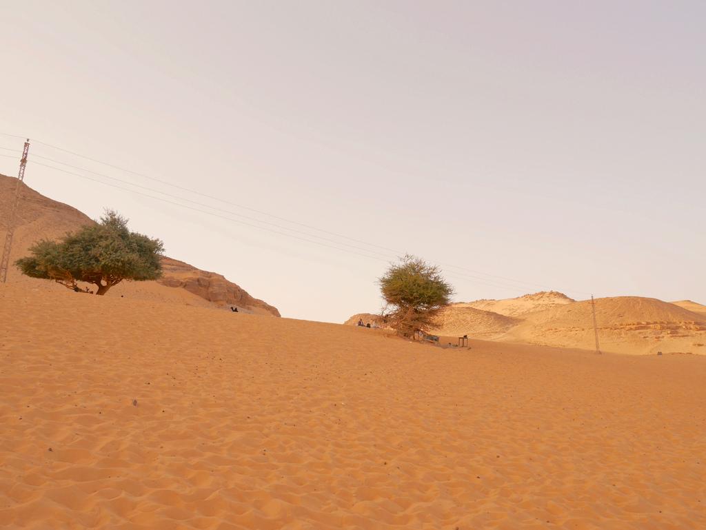 撒哈拉沙漠 011.jpg